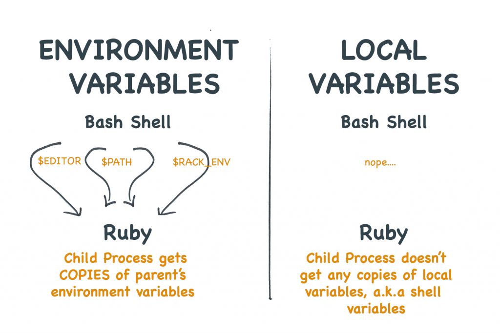 Environment variables are  not the same as shell variables