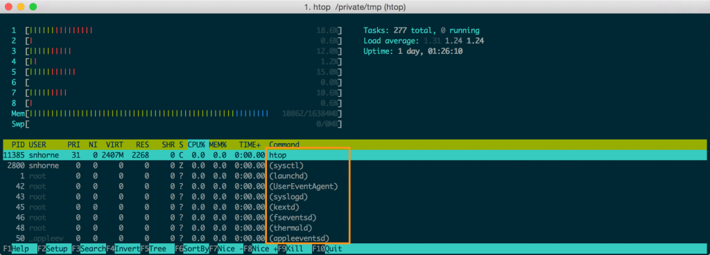 htop shows the process names in the rightmost column.